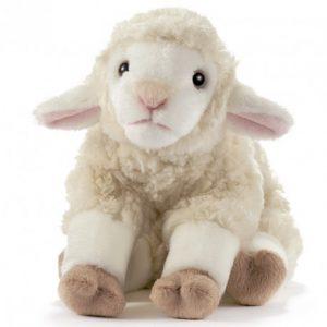 agneau-blanc