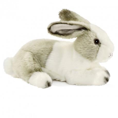 lapin-blanc-gris-couché